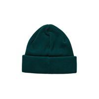Czapka zimowa Polar Skate Co. Double Fold Cotton Beanie (Dark Green)